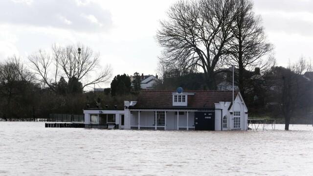 Britanicii au lansat o campanie pe Facebook dupa ce doi cai au fost lasati sa moara in inundatii