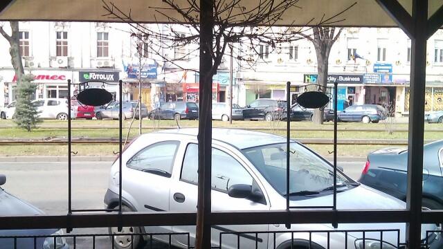 Terasele din Arad au inghitit si copacii, nu doar trotuarele. Ce spun specialistii fitosanitari - Imaginea 2