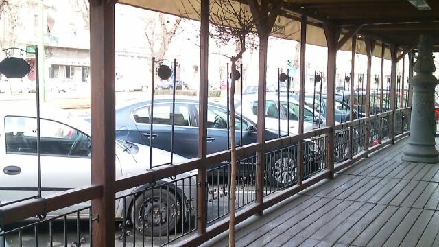 Terasele din Arad au inghitit si copacii, nu doar trotuarele. Ce spun specialistii fitosanitari - Imaginea 3