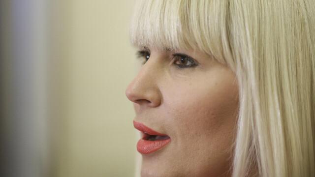 Elena Udrea cere repunerea pe rol a dosarului \