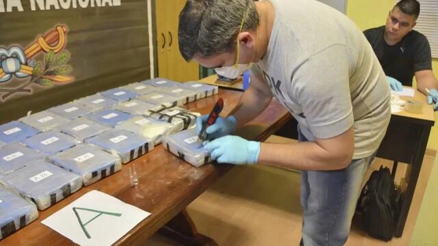 captura de droguri in ambasada rusiei din argentina