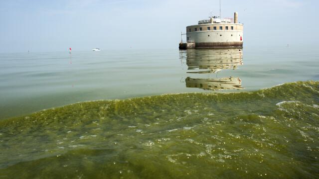 Motivul pentru care locuitorii unui oraș vor ca lacul Erie să capete statut de persoană - Imaginea 4