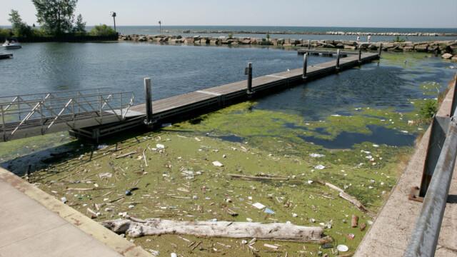 Motivul pentru care locuitorii unui oraș vor ca lacul Erie să capete statut de persoană - Imaginea 5