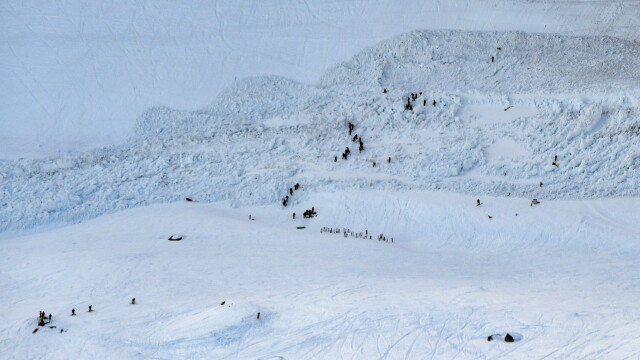 Avalanşă pe una dintre cele mai populare pârtii de schi. Turişti dispăruţi sub zăpadă