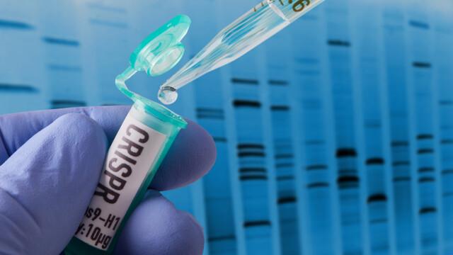 editare genetica CRISPR