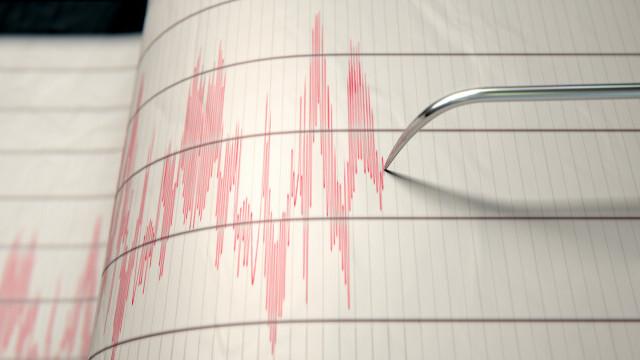 Seism cu magnitudinea 7,2 în nord-estul Japoniei. Alerta de tsunami a fost ridicată