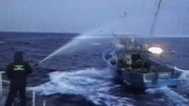 Pescador turcesc prins la braconaj