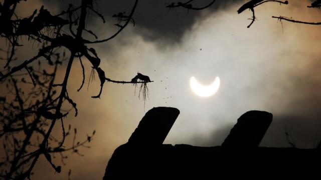 Prima eclipsa partiala de soare din 2011 a durat trei ore. VIDEO si FOTO! - Imaginea 3