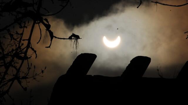 Prima eclipsa partiala de soare din 2011 a durat trei ore. VIDEO si FOTO! - Imaginea 4