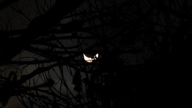 Prima eclipsa partiala de soare din 2011 a durat trei ore. VIDEO si FOTO! - Imaginea 14