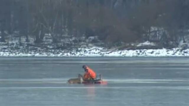 Operatiune de salvare cu final tragic. O caprioara scoasa dintr-un lac inghetat a fost eutanasiata