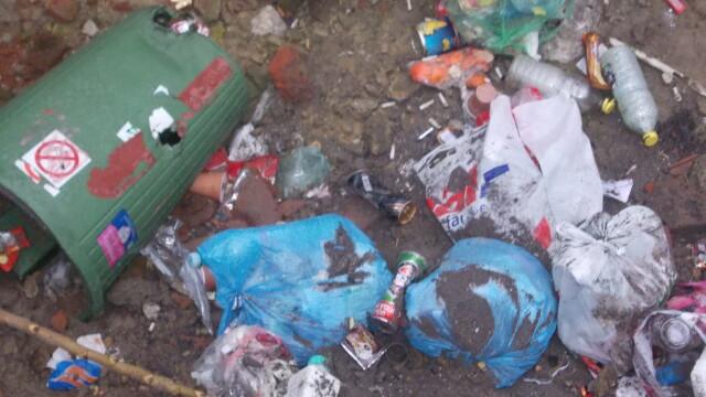 Groapa de gunoi, in locul unei locuinte prabusite in urma cu un an, in cartierul Fabric. FOTO - Imaginea 2