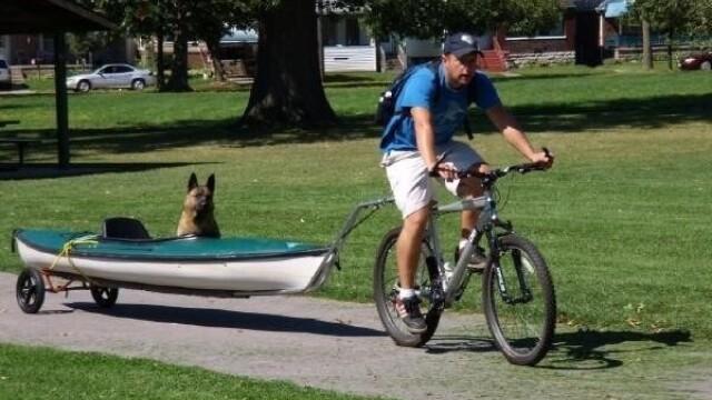 Imagini emotionante. Modul inedit in care un american isi plimba cainele cu dizabilitati. FOTO