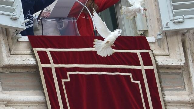 Ce s-a intamplat cu porumbeii eliberati de Papa Francisc in timpul slujbei de duminica de la Vatican - Imaginea 3