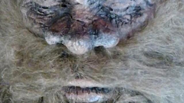 Bigfoot sau un costum de cauciuc? Un barbat incearca sa dovedeasca ca a ucis creatura legendara cu noi fotografii - Imaginea 4