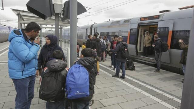Imigranti Suedia