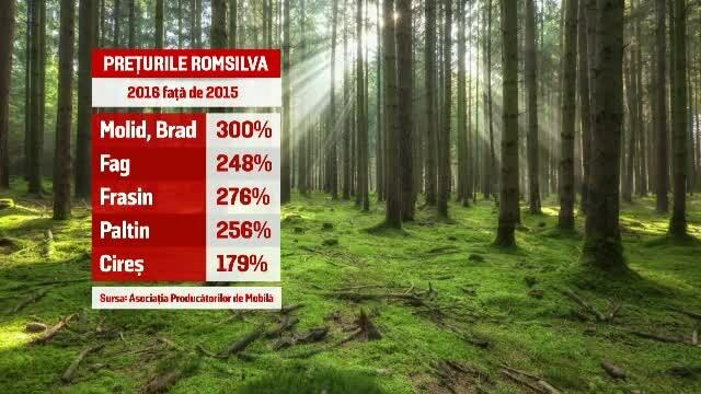 Razboi pe preturile de pornire ale lemnului. Romsilva le-a triplat, cei din industrie spun ca vor intra in curand in criza