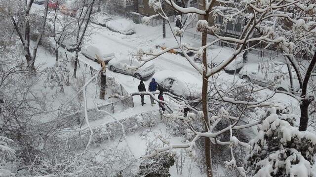 Capitala sub zapada: 500 de copaci si stalpi de inalta tensiune s-au prabusit. Numerele la care puteti cere ajutor Primariei - Imaginea 3