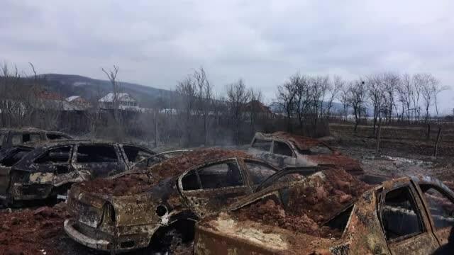 masini arse in incendiu