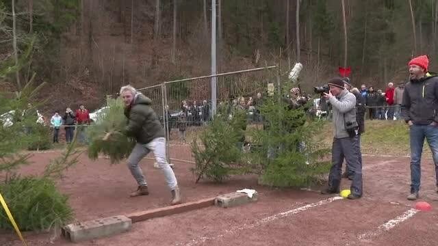 Despodobitul bradului a devenit în Germania un concurs distractiv