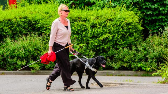 Nevăzătoare pusă să se dea jos din autobuz, din cauză culorii câinelui însoţitor