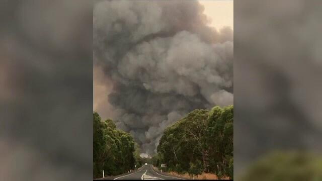 Incendii devastatoare în Australia - 5