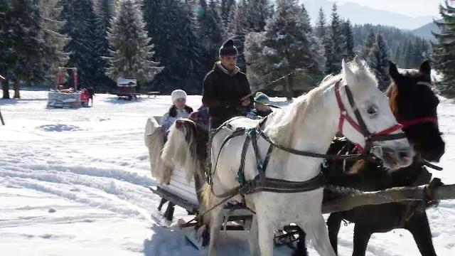 Cât a plătit o familie de turiști din Rusia pentru o plimbare cu sania trasă de cai în Brașov