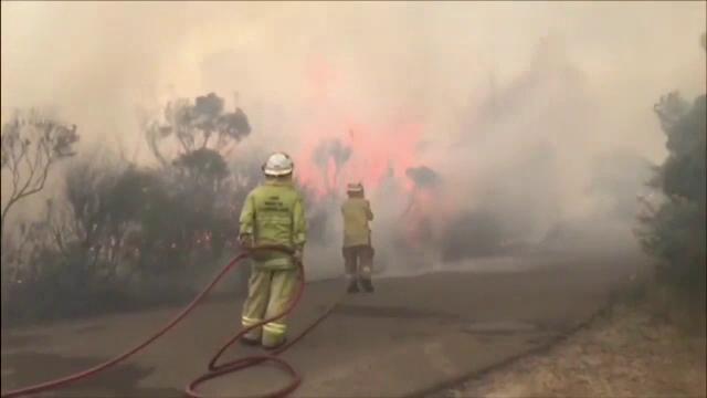 Pagube catastrofale după incendiile din Australia. Pe ce dau vina fermierii din zonă - Imaginea 1