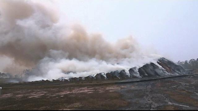 Pagube catastrofale după incendiile din Australia. Pe ce dau vina fermierii din zonă - Imaginea 3