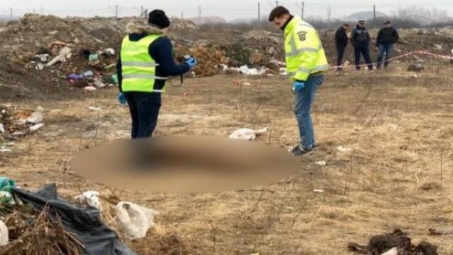 Descoperire înfiorătoare făcută de autorități pe un câmp de la ieșirea din Timișoara - Imaginea 2