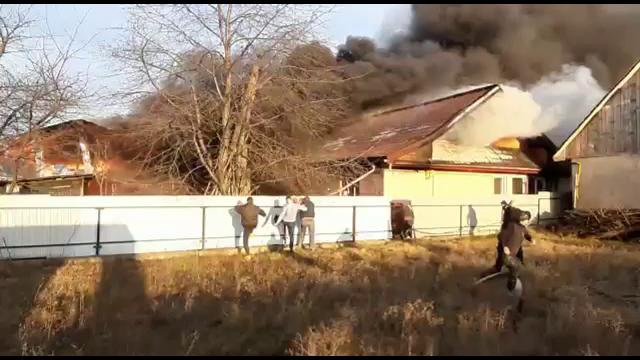 Dezastru pentru o familie din Neamț din cauza unui scurtcircuit