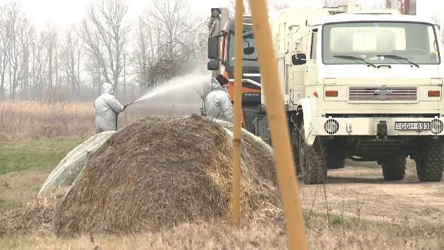 Focarele de gripă aviară s-au extins în 24 de localități. Autoritățile sunt în alertă - Imaginea 1