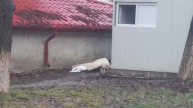 Femeie moartă, abandonată mai multe ore în curtea Spitalului Județean Botoșani. Cum a fost posibil