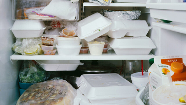 Un sarpe, un steag si pijamale. Iata ce tin oamenii in frigider. GALERIE FOTO - Imaginea 2