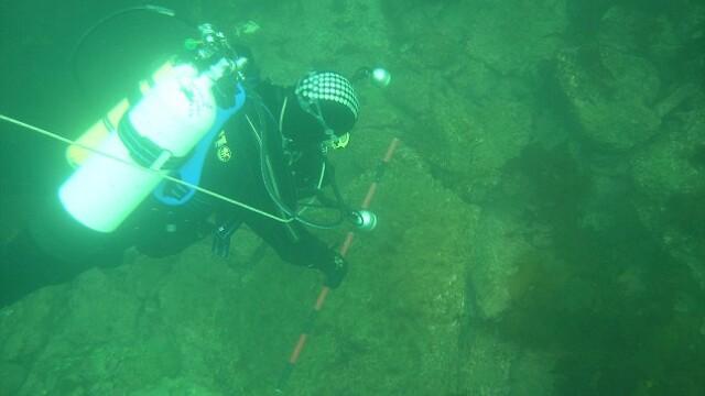 Descoperire spectaculoasa pe fundul Marii Nordului. \