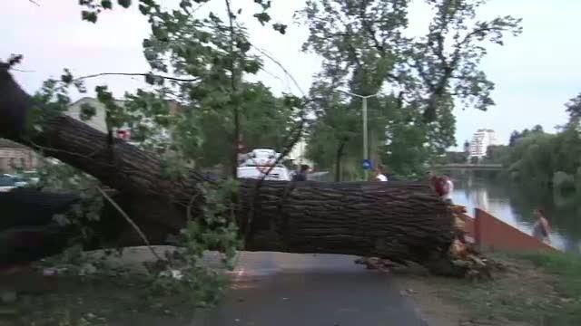 Furtuna Oradea