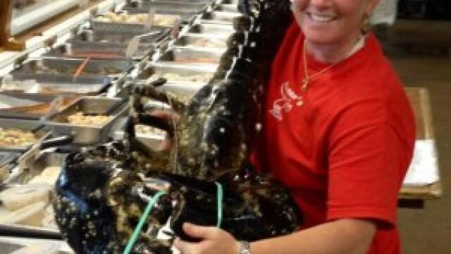 Un homar de 10 kilograme a fost prins in apropiere de Capul Cod. \