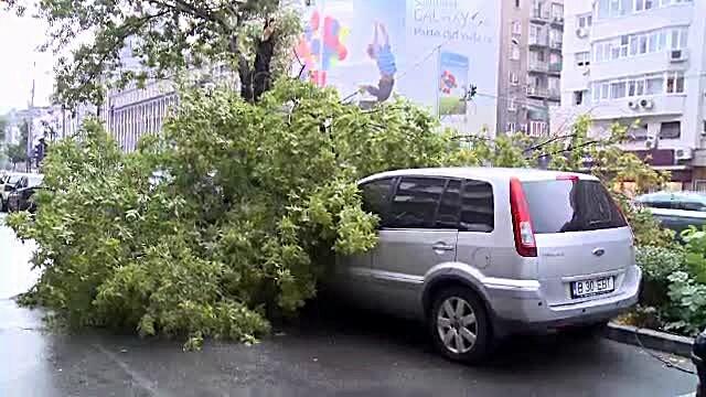 20 de copaci si un stalp de electricitate, doborati de furtuna din Bucuresti. 5 masini, avariate
