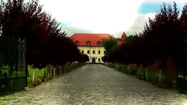 castelul haller