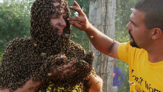 Concursul interzis celor slabi de inima. Ce s-a intamplat cu acest barbat dupa ce s-a lasat acoperit de sute de mii de albine - Imaginea 3