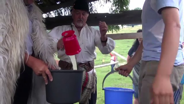 Masuratul laptelui, sarbatoarea cand ciobanii negociaza cu proprietarii de oi, a devenit o adevarata atractie turistica