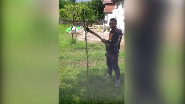 Judetul din Romania invadat de serpi si de peste 2 metri. \