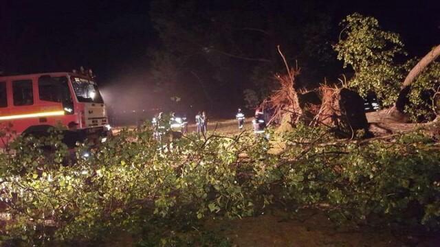 Un mort si 14 raniti in urma unei furtuni puternice in Bihor. Martor: \