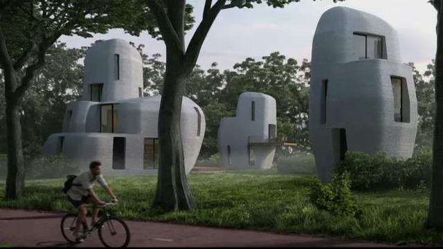 case imprimantă 3D