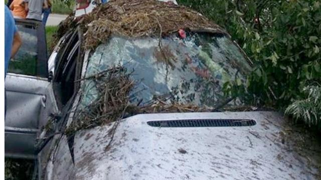 O persoană a murit, iar alte trei au fost preluate de un elicopter în urma unui accident în Timiș