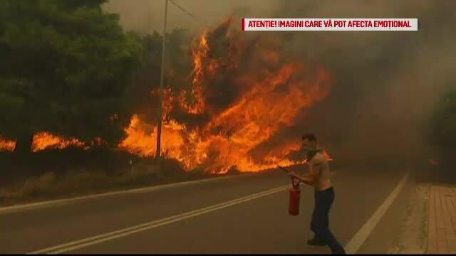 """Incendii în Grecia. Supraviețuitor: """"Cine dormea a murit în casă"""""""