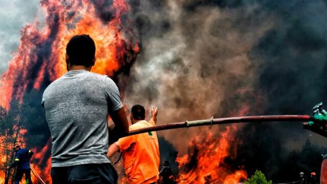 Incendii în Grecia: Zeci de persoane sunt date dispărute. Satul Mati a fost șters de pe hartă