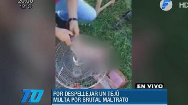 amenda paraguay