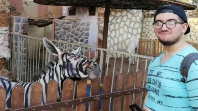 O grădină zoologică a pictat un măgar, ca să pară că e zebră