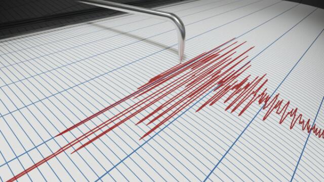 Cutremur cu magnitudinea 7,3 în Indonezia